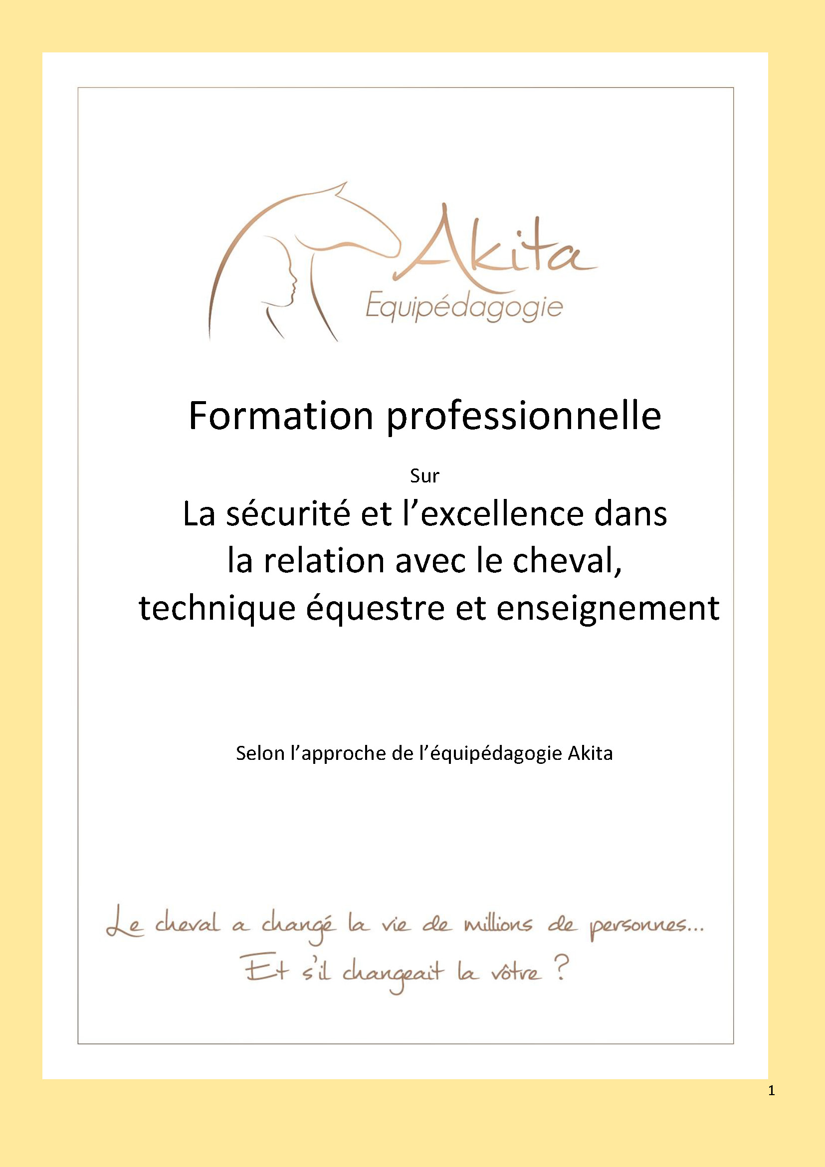 Akita Equipedagogie - Formation professionnelle